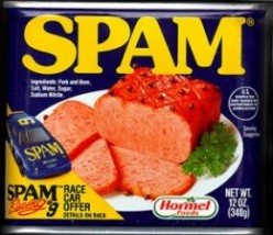Spam-O-Rama recipes - What can you do with Spam®?