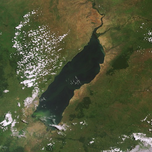 Satellite image of Lake Albert