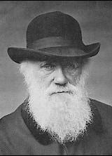 Charles Darwin: Evolutionist.   2/12/1809 - 4/19/1882