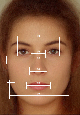 A Symmetrical Face Symmetry is measured by balanced proportions