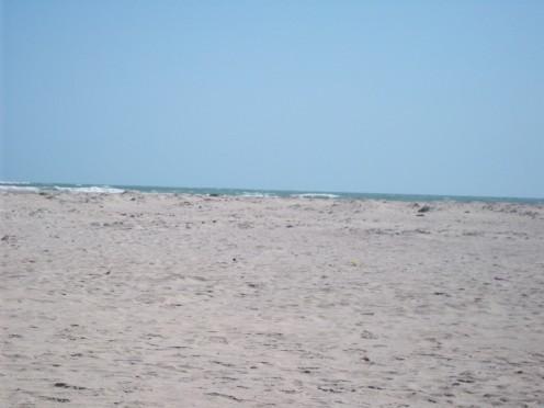 The Roaring Indian Ocean.........A View From Dhanushkodi