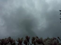 Cinders Clouds from Altijd jong Source: flickr.com
