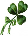 shamrock apparently only grows in Ireland