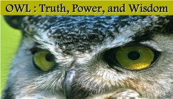 OWL: What Does it Mean When Truth, Power, and Wisdom Visits You