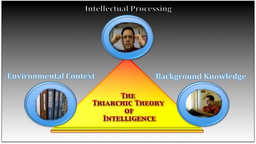 Robert Sternberg's Triarchic Theory of Intelligence