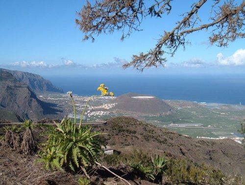 View over coast