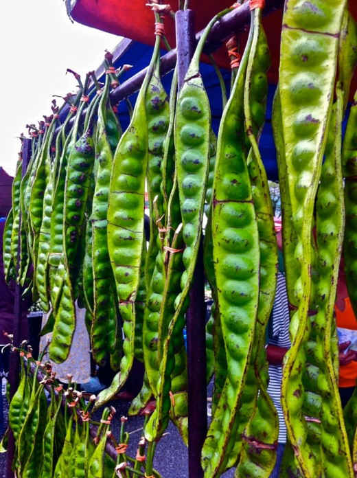 Fresh petai/sator (stinky beans)