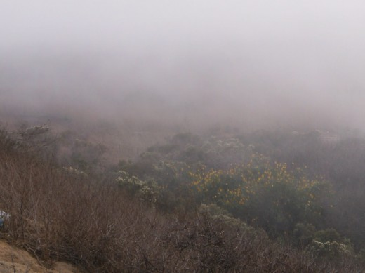 Location: I-5 Southbound, view point between San Clemente and Oceanside CA