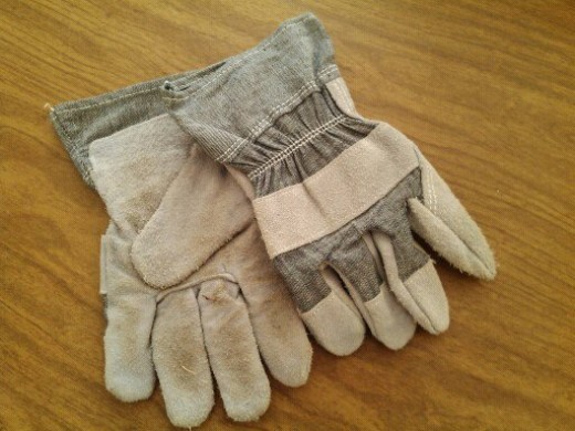 Leather work gloves are best, but garden gloves are a good substitute.