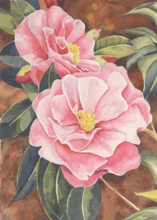 "Camellia, watercolor 5x7"" Sold at Local Art Group Gallery"