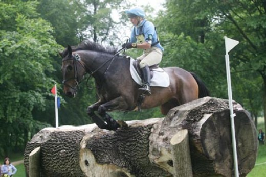 briarlandsblackberry going eventing