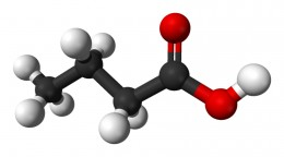 Butyric acid is a relatively benign saturated fatty acid. However high concentrations of free butyric acid are pretty stinky!