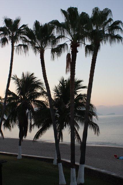 Sunrise at Pilar