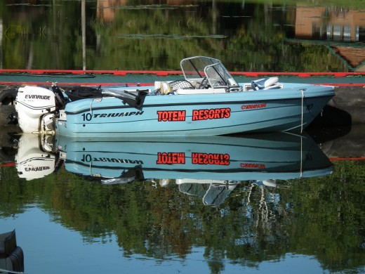 19 Foot Triumph Boat with 130 hp Evinrude Motor