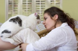 Companion animals effect on loneliness