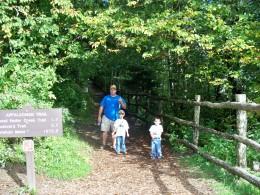 Appalachian Trail @ Newfound Gap