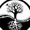 indranath profile image