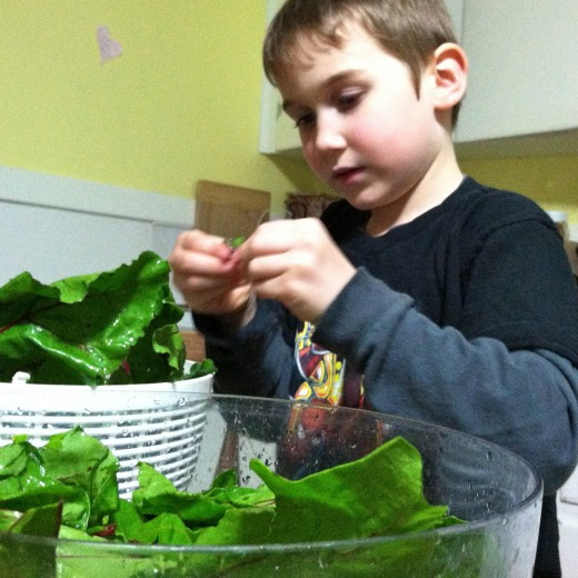Break greens away from the stem (stems make great compost!)