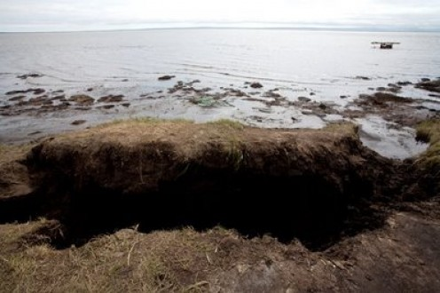 In the eroded craters it is possible to see the thin layer of ice that is melting around six feet below the surface. The drips are soaked back up into the soil, causing it to become soft and spongy which allows the sea to slowly reclaim the land.