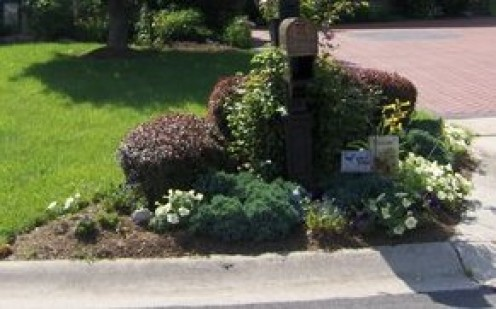 This is the Garden around the mailbox Clematis wrap the mailbox an assundry small flowers go in the flower box behind the mailbox