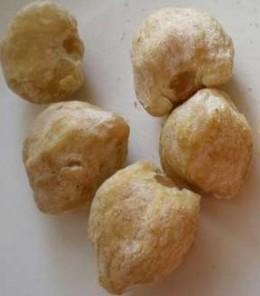 Candlenut (Kemiri)