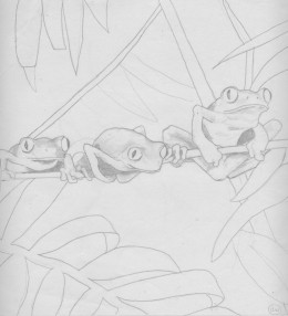 "Tree Frog Trio 10 x 10"" Pencil"