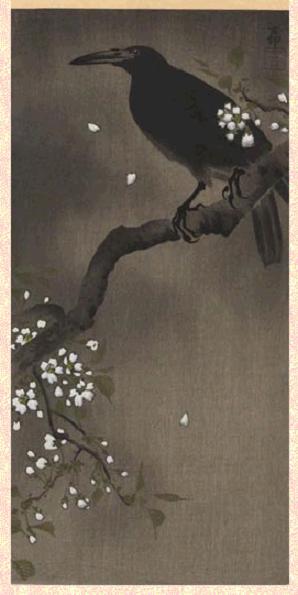 Cherry blossom crow - by Koson.