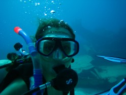 Top 3 Scuba Diving Locations