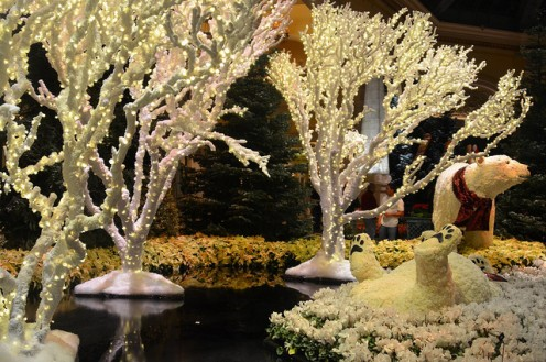 Winter display at the Bellagio Conservatory.