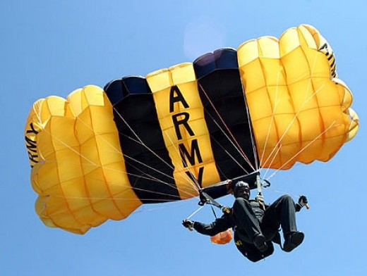 A jump at one of the Annual Elgin AFB Air Shows. The Gold Knights have a Gold and a Black Division and the US Army also has a parachute group called the Black Daggers.