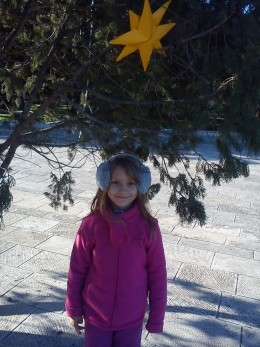 A giant Christmas tree is placed in the town square for all to see and enjoy!
