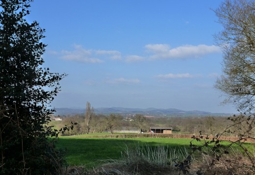 The Malvern Hills in the distance on the Daffodil Way