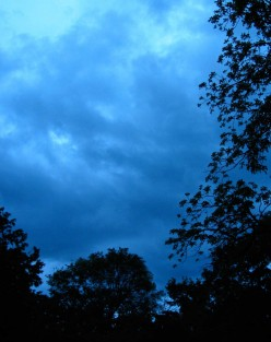 The coming storm turned the whole sky a deep blue and the wind that followed was unprecedented and down right scary.