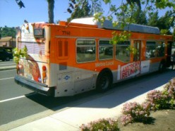 Taking The Bus (vs) Compared To Driving A car - Its Effects On Pollution, Global Warming & Our Health