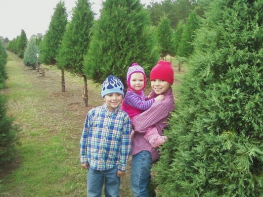 Kids love Christmas tree farms!