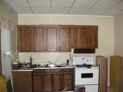 Kitchen Cupboards Painting vs. Replacement
