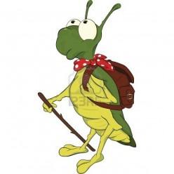 Meet John The Jumping Grasshoppers