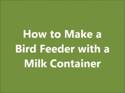 How to Make a Simple Bird Feeder with a Milk Carton or Jug: Great Spring Craft for Kids! (Video)
