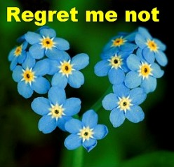 How to Deal with Regret, Cope with its Consequences, Prevent it