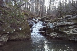 4 Great Places In Birmingham, Alabama To Experience Nature