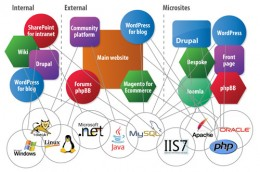 cms intranet usability