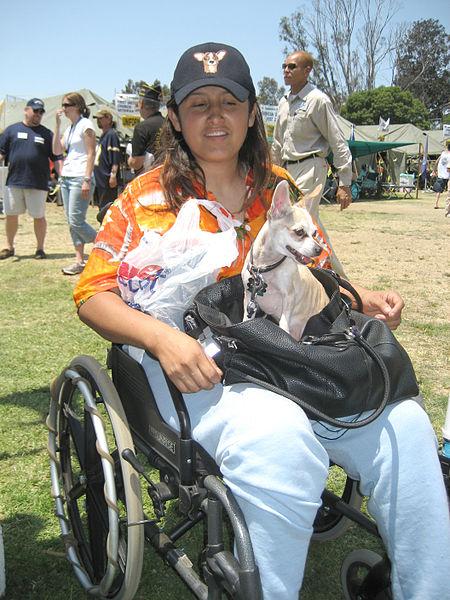 Homeless female Iraq veteran.