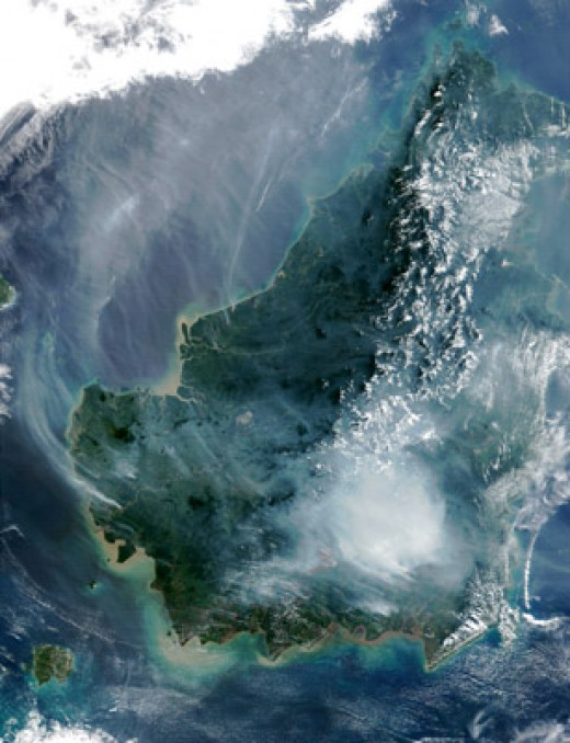Peat swamp forests burning on island of Borneo, Malaysia. When peat swamp forests are deforested, the land dries up and becomes prone to flooding and fire.