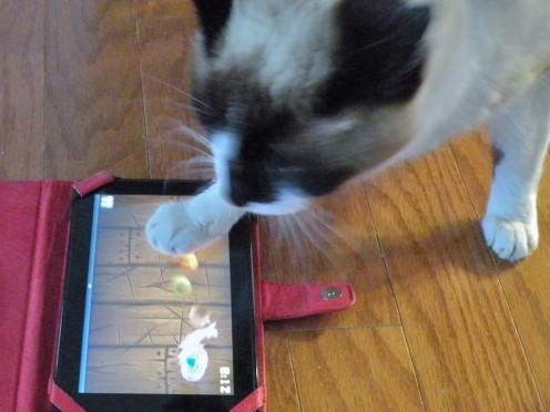 Gemini tests my new Kindle
