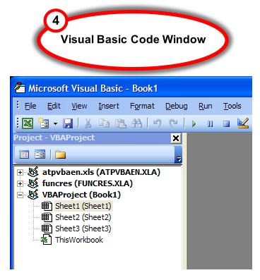Figure 4.  Visual Basic Editor window
