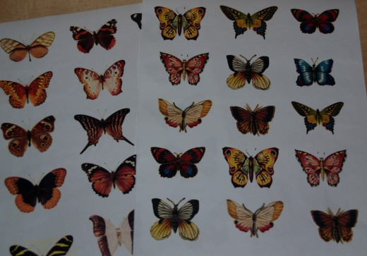 Tissue paper sheet of decoupage butterflies.