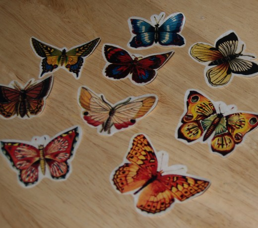 Trimmed butterflies. Although the butterflies could have been trimmed right up to their edge, the author prefers leaving a small amount of the white tissue paper as a border.