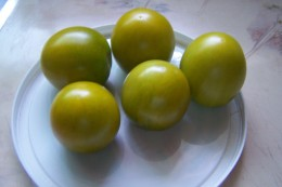 Green Grape novelty tomato ripens to a light green color as these ripe fruits