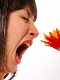 Natural Remedies for Seasonal Allergies-Without Side Effects
