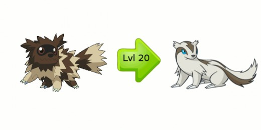The Zigzagoon Evolution Chart - Zigzagoon Evolves into Linoone at Level 20